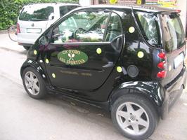 smart personalizzata società tennis